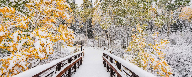 Snowmass